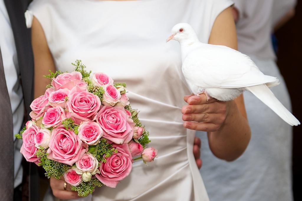 Hochzeitstauben Foto