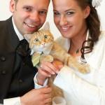 Hochzeitsfoto München
